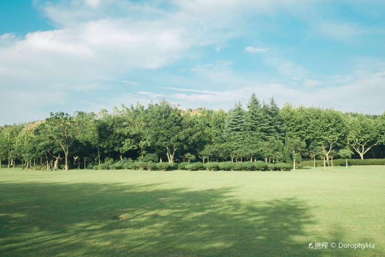 Longbeishan Forest Park1