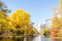 10月最佳旅行地推荐,这几个地方藏着秋天最美的风景!