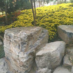 邓家花园旅游景点攻略图