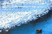 杭州新开6条航线,特价机票一应俱全,¥450去新疆看雪!