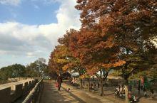 大阪城天守阁,春秋两季乃最美之境