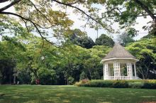 我心目中新加坡最不容错过的景点:享誉全球的新加坡植物园 新加坡不愧为花园国家,整座城市高达70%的绿