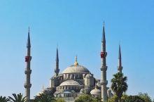 伊斯坦布尔,一座被喵星人占领的城市