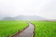 韩国游逛一逛景福宫坐坐小火车