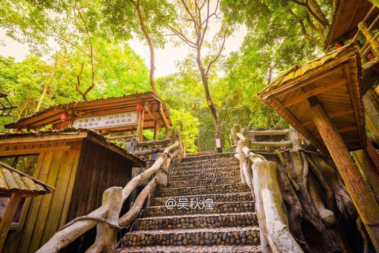 Yingde Tianmengou Scenic Area4