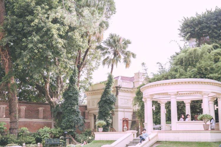 Garden Of Dreams2