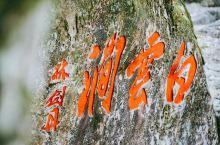浙江温州乌岩岭风景区