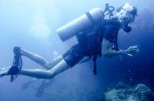 元旦去哪玩:去泰国考潜水证啦!