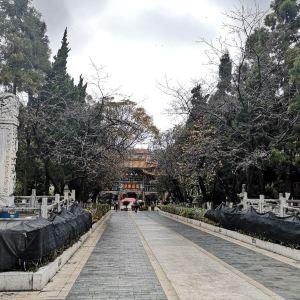 圆通寺旅游景点攻略图