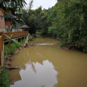 曼掌村旅游景点攻略图