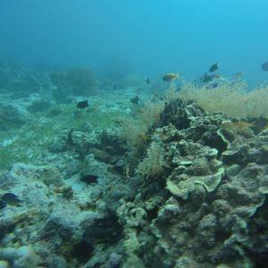 卡拉岗曼岛旅游景点攻略图
