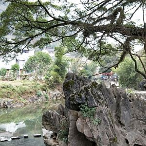 龙爪榕旅游景点攻略图
