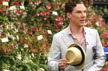 和卷福看花是一种怎样的体验?快收下2019年英国花艺展指南