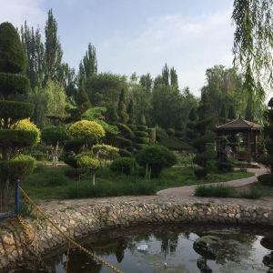 榉子洲公园旅游景点攻略图