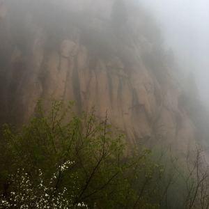 银山塔林旅游景点攻略图