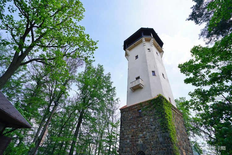 Diana Lookout Tower1