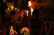 【 拉差县动物园 】   看看人家泰国动物园搞的多卡通   各种动物表演时间表   入口处,就是一只