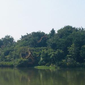 放生湖旅游景点攻略图