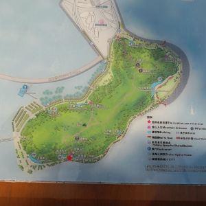 野狸岛旅游景点攻略图