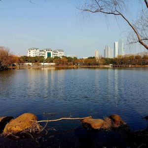 湖南师范大学旅游景点攻略图