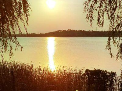 金鄉縣金平湖公園