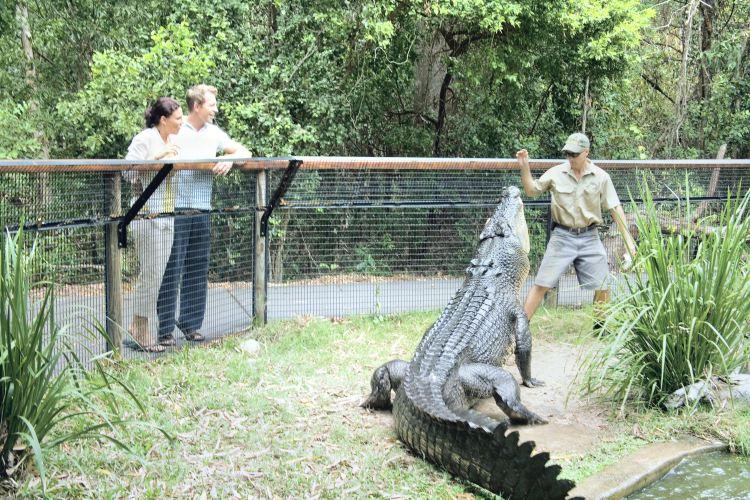 Hartley's Crocodile Adventures1