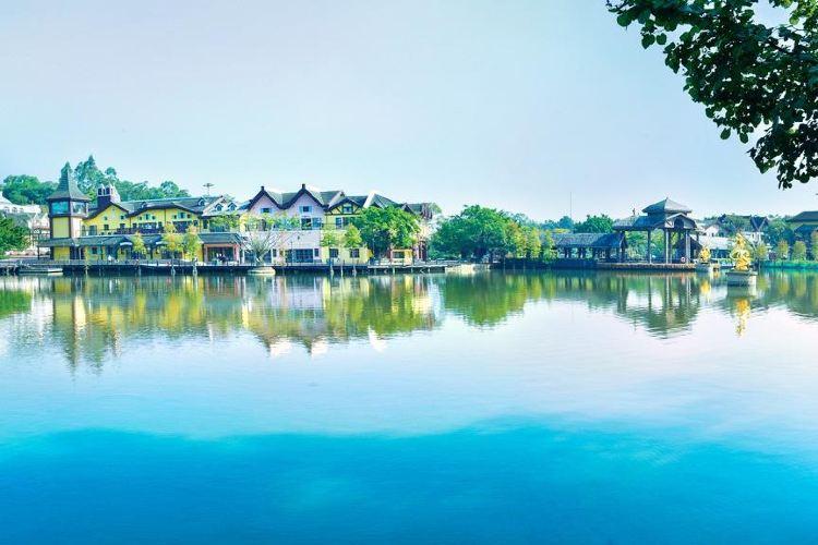 Eastern Huaqiao Cheng Tea Valley