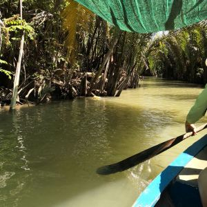 湄公河三角洲旅游景点攻略图