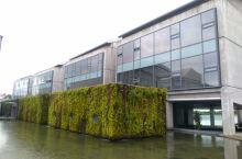冰岛市政厅