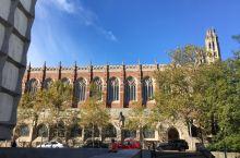 纽黑文,耶鲁大学法学院