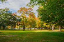 High Park的秋景