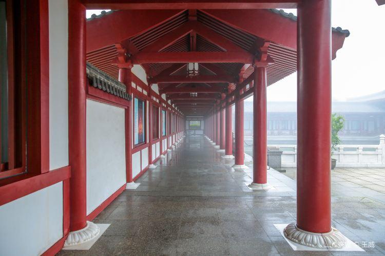 中國佛學院普陀山學院1