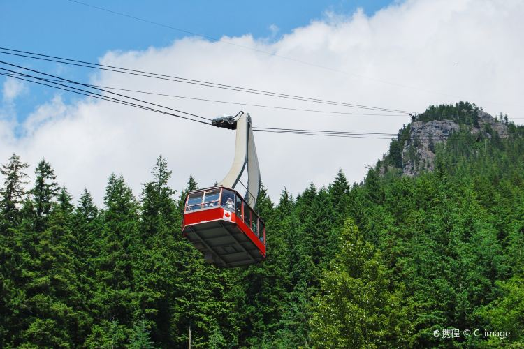 Grouse Mountain1