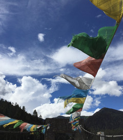[拉萨游记图片] 十万丈日光——八月西藏纪行