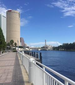 [坦帕游记图片] 眼中的坦帕,佛罗里达 Tampa ,Florida