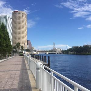 坦帕游记图文-眼中的坦帕,佛罗里达 Tampa ,Florida