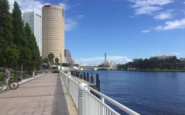眼中的坦帕,佛罗里达 Tampa ,Florida