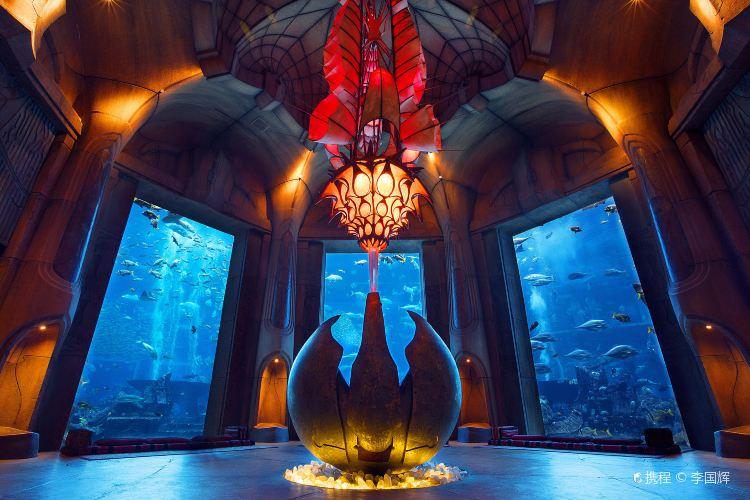 Dubai Aquarium and Underwater Zoo1