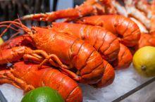 澳洲政府:龙虾、鲤鱼泛滥!网友:让我来!