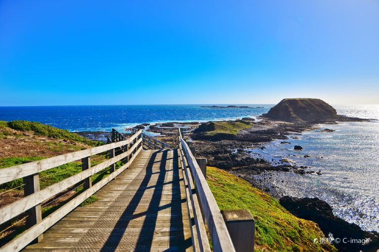 Phillip Island Nature Park1