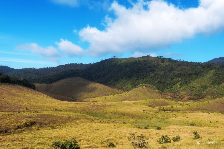 Horton Plains National Park3