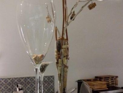 Oia Vineyart