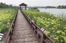 周末自驾游,常熟虞山尚湖沙家浜2天游
