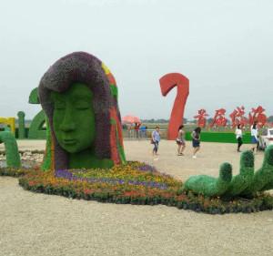 凉城游记图文-凉城县首届岱海花卉艺术节今开幕,首日迎来四万多游客