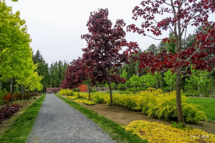 Manabe Garden1