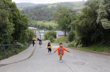 #向往的生活 去世界上最陡的街道走一走