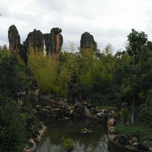 杏林大观园旅游景点攻略图
