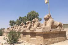 埃及卢克索卡尔纳克神庙一览