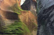 陕北甘泉大峽谷之桦树沟