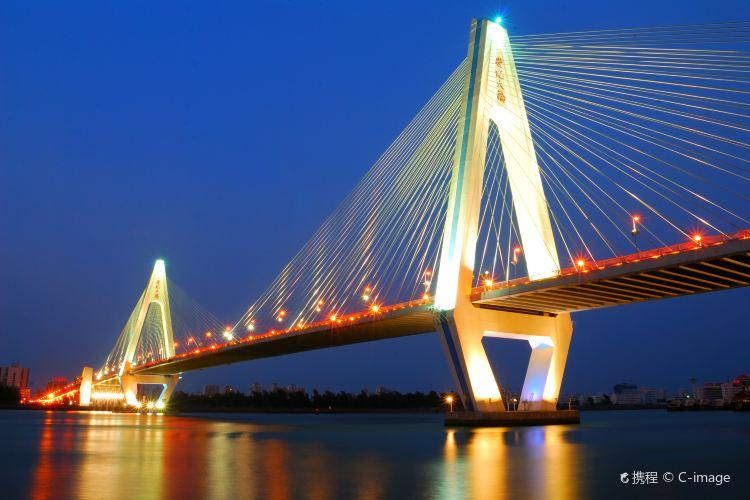 海口世紀大橋2